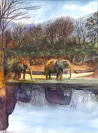 Elephant Painting - Animal Painting by Ohio Artist Terri Meyer