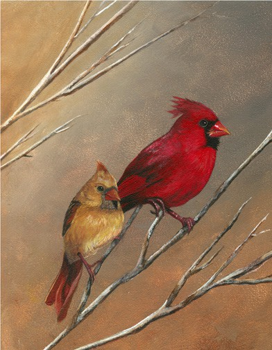 Cardinal Painting, Bird Painting by Ohio Artist Terri Meyer