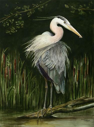 Blue Heron Painting, Bird Painting by Ohio Artist Terri Meyer