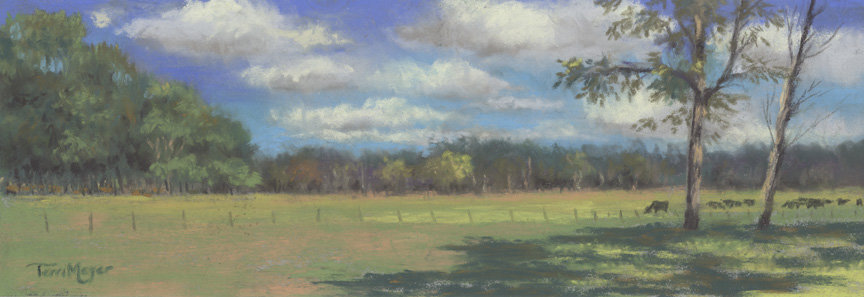 Ohio Landscape painting -by Ohio Artist Terri Meyer, Plein Air Landscape Painting