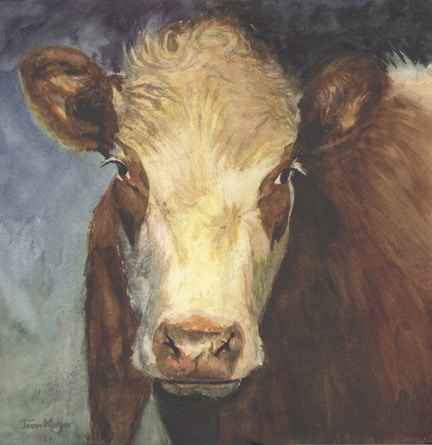 Cow Painting, Portrait of a Cow by Ohio Artist Terri Meyer