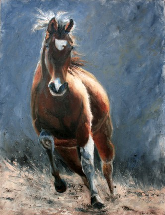 Horse Painting, Animal Painting by Ohio Artist Terri Meyer