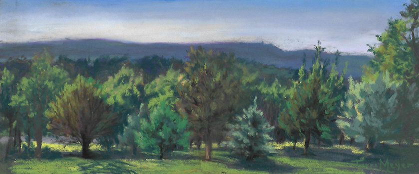 A View of the Catskill Mountains by Ohio Artist Terri Meyer
