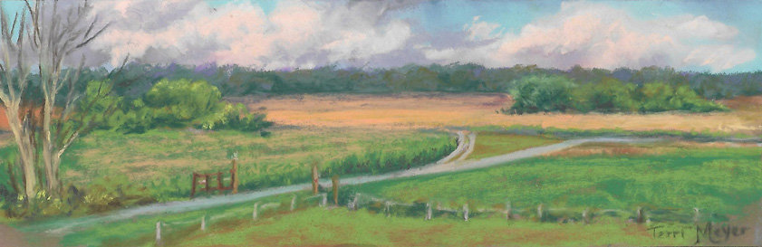 Ohio Landscape Painting of Wheat Fields by Ohio Artist Terri Meyer