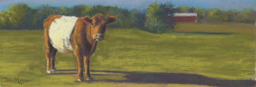 The Belted Cow by Ohio Artist Terri Meyer, Cow Painting, Belted Cow Painting, Plein Air Landscape Paintings