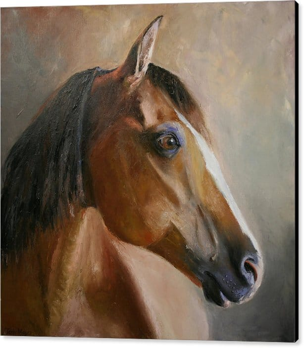 Large Canvas Horse Print