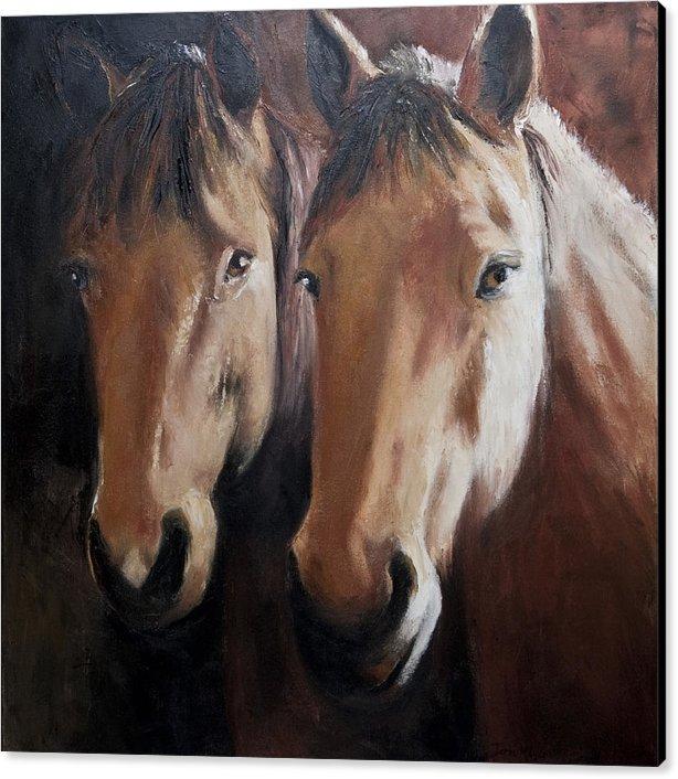 Framed Artwork, Horse Canvas Print, Equestrian Art, Artwork of Horses