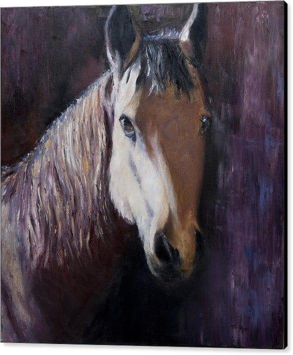 Horse Artwork, Canvas Print of Horse