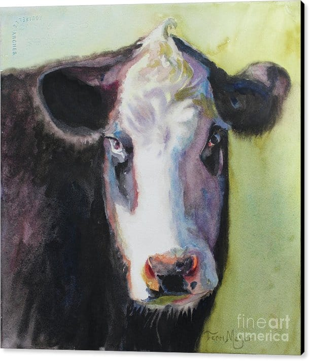 Canvas Print of a Cow, Cow Painting, Cow Artwork